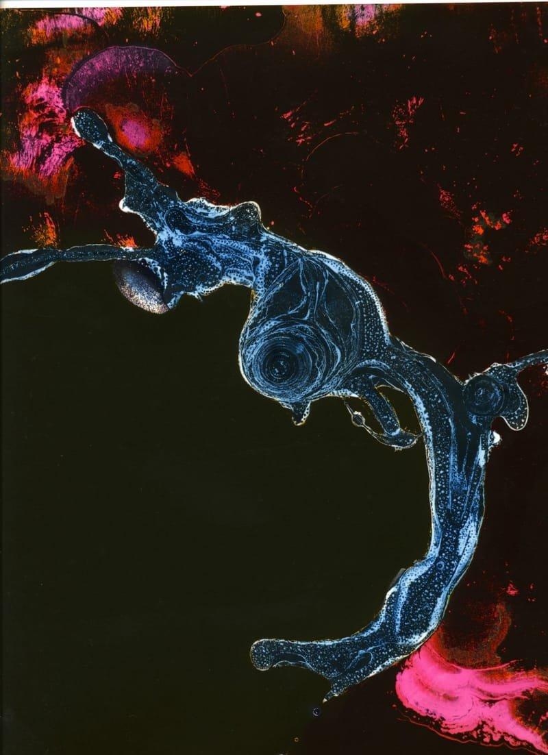 embryon 2