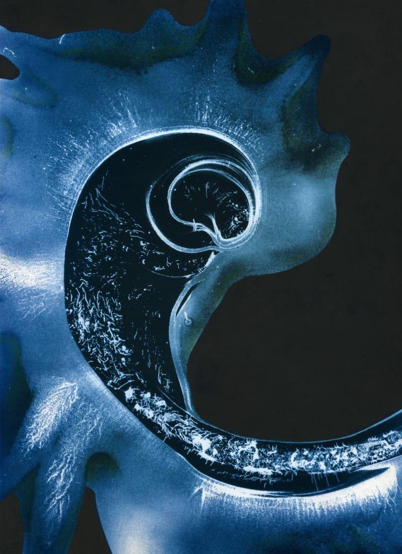 embryon 1