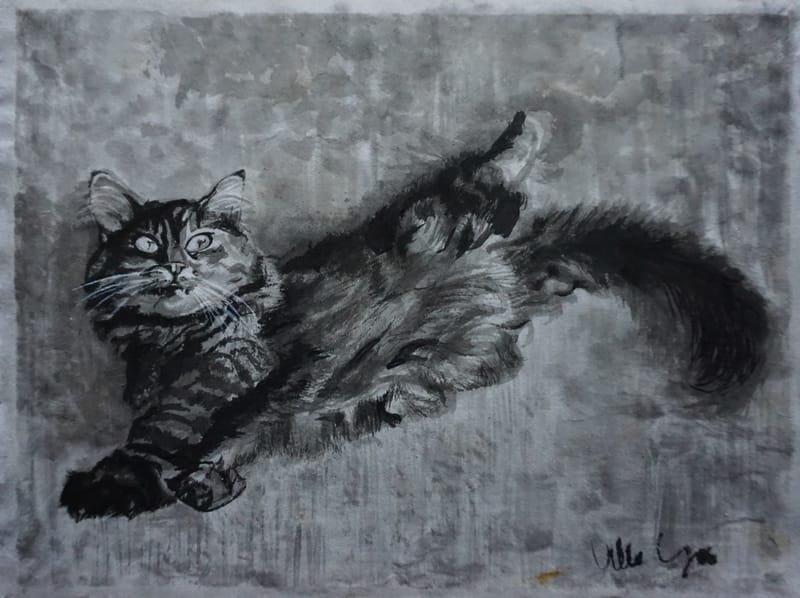 CAT # 3,