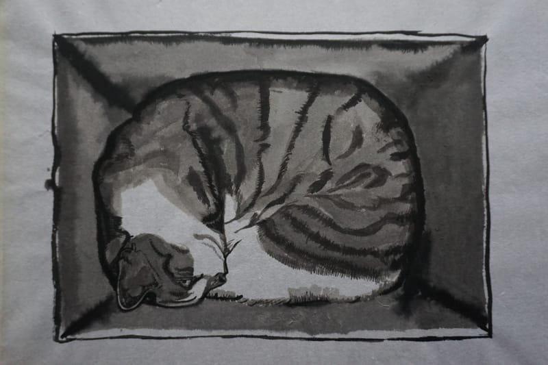 CAT # 1.