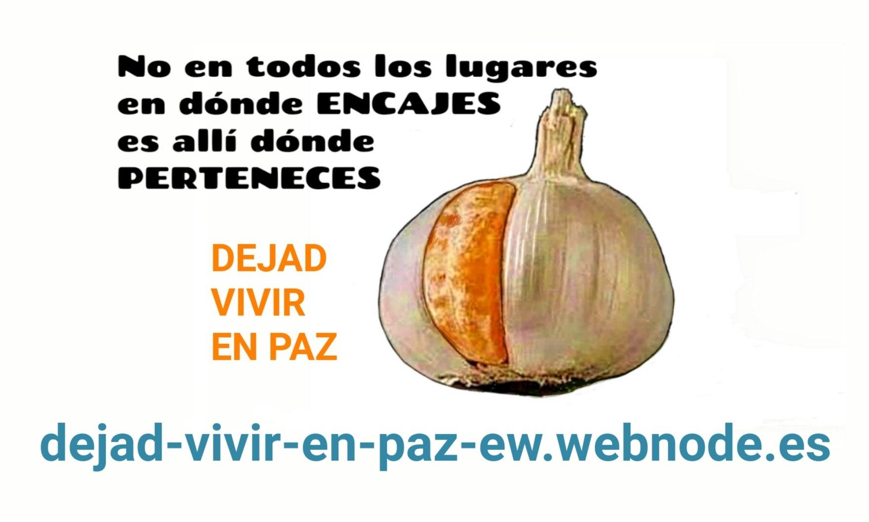 hostal santa clara estartit español