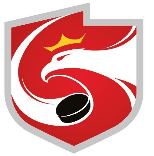 Polski Związek Hokeja na Lodzie