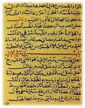 صورة من المخطوطات