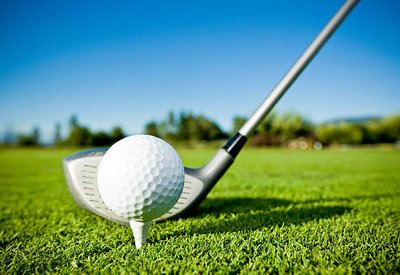 What Golf Club Company do you Need?