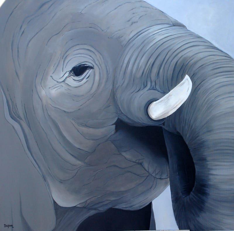 Série Éléphant - 2