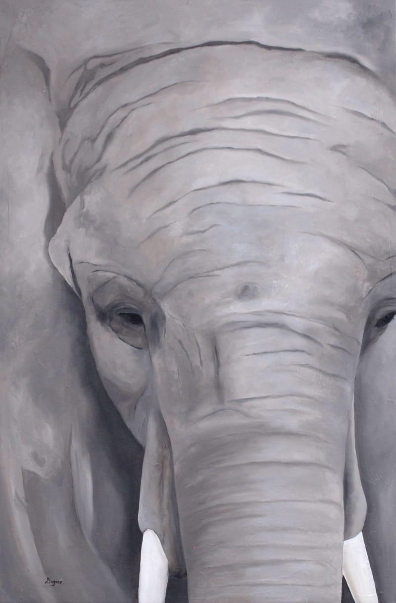 Série Éléphant - 3