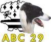 ABC 29